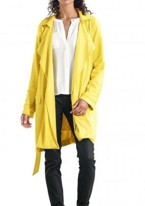 Geltonas paltukas