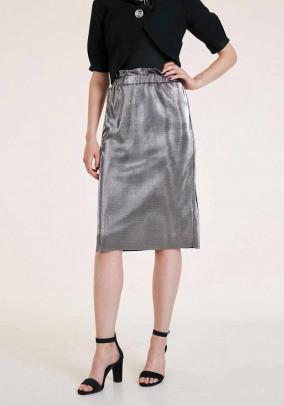 Blizgus sidabrinis sijonas